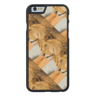 Big lion looking far away carved maple iPhone 6 case