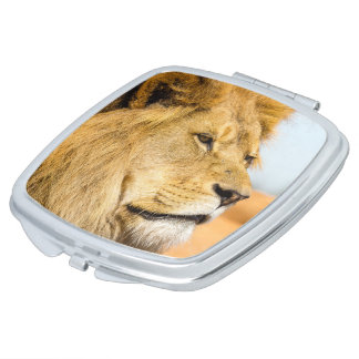 Big lion looking far away compact mirrors