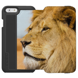 Big lion looking far away incipio watson™ iPhone 6 wallet case