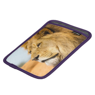 Big lion looking far away iPad mini sleeve