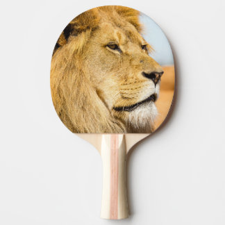Big lion looking far away ping pong paddle