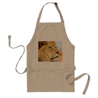 Big lion looking far away standard apron