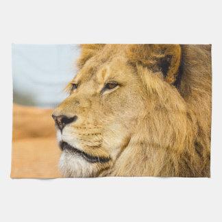 Big lion looking far away tea towel