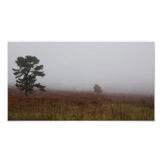 Big Meadows, Shenandoah National Park, Virginia Poster