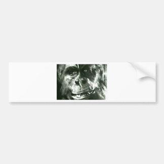 Big Monkey Face Bumper Sticker