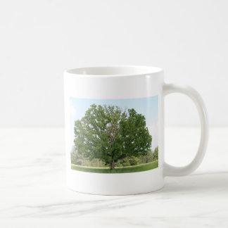 Big old tree basic white mug
