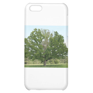 Big old tree iPhone 5C cover