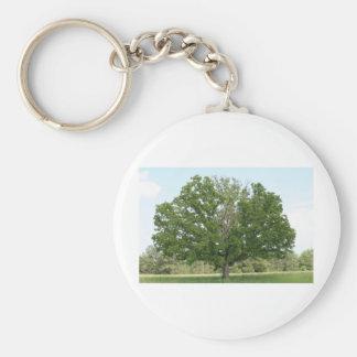Big old tree key chains