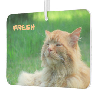 "Big Orange Cat says ""Fresh"" Car Air Freshener"