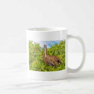 Big Pelican at Tree, Galapagos, Ecuador Coffee Mug