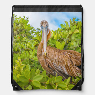 Big Pelican at Tree, Galapagos, Ecuador Drawstring Bag
