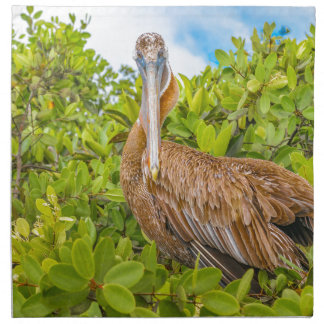Big Pelican at Tree, Galapagos, Ecuador Napkin