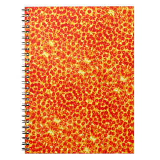 Big Pizza Pattern Notebook