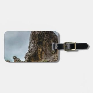 big point little point luggage tag