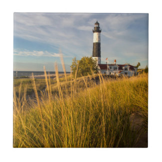 Big Sable Point Lighthouse On Lake Michigan Tile