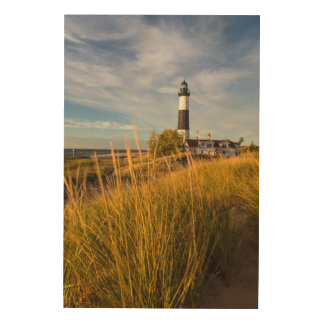 Big Sable Point Lighthouse On Lake Michigan Wood Canvas