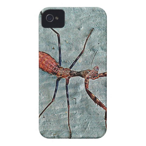 Big Scary Bug iPhone 4 Case-Mate Cases