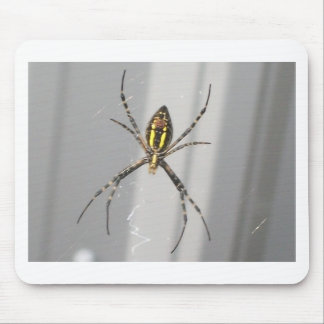 Big Scary Spider Mouse Pad