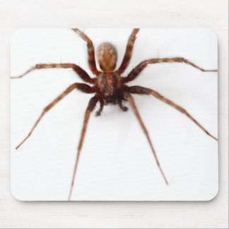 Big Scary Spider Mousepads