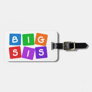 Big Sis luggage tag