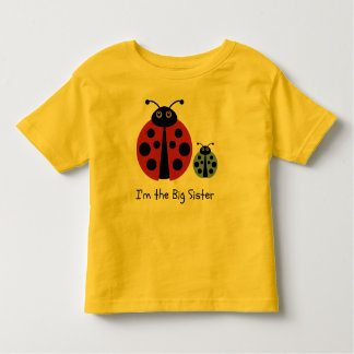 Big Sister Ladybird Shirt