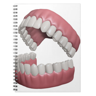 big smile teeth notebook