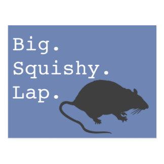 Big Squishy Lap Rat Postcard