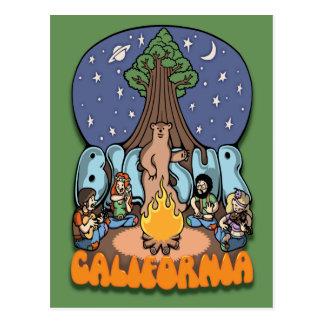 Big Sur III Postcard