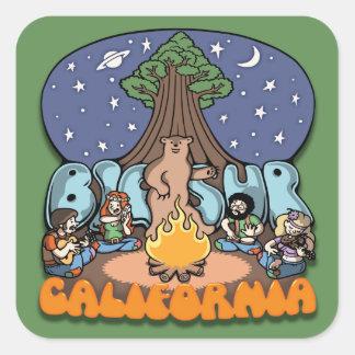 Big Sur III Square Sticker