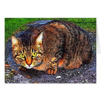 Big Tabby Cat Card