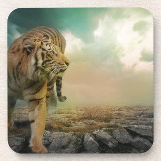 Big Tiger Coaster