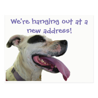 Big Tongue Fur Child New Address Postcard