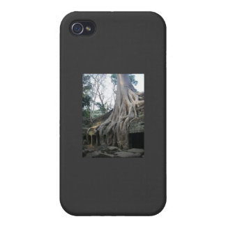 big tree cell phone case iPhone 4 covers
