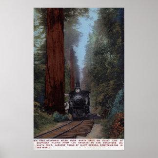 Big Tree Railroad Station Posters