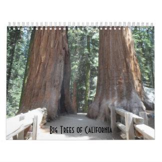 Big Trees of California 2017 Wall Calendar