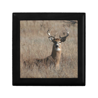 Big Trophy Buck Deer in Tall Grass Camo Small Square Gift Box