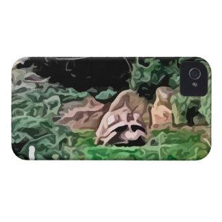 big turtle painting iPhone 4 Case-Mate case