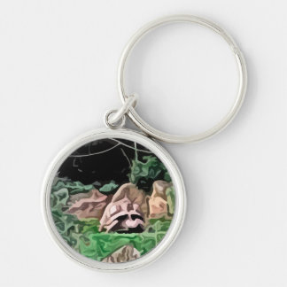 big turtle painting Silver-Colored round key ring