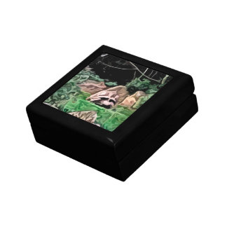 big turtle painting small square gift box