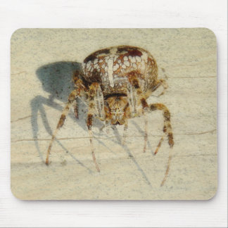 Big, Very, Scary, Hairy Spider Mouse Pad