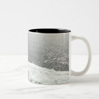Big Wave Mugs