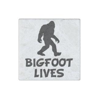 Bigfoot Lives Stone Magnet