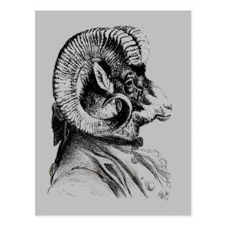 Bighorn Sheep In Suit Postcard