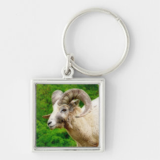 Bighorn Sheep - Male with Big Horns Silver-Colored Square Key Ring
