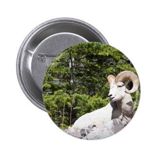 Bighorn Sheep Ram Buttons
