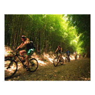 Biking in bamboo trail 21.5 cm x 28 cm flyer
