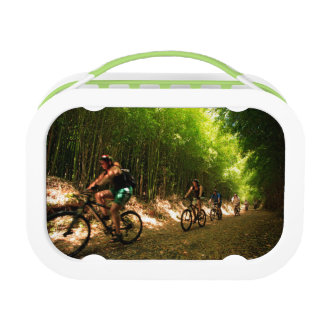 Biking in bamboo trail lunchbox