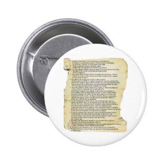 bill of rights pins