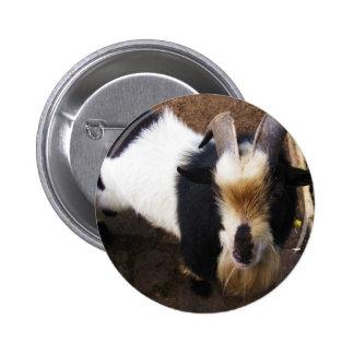 Billy Goat 6 Cm Round Badge
