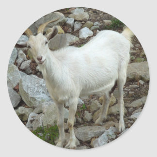 Billy Goat Classic Round Sticker